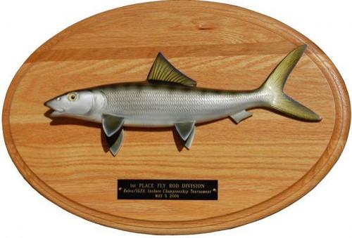 Bonefish Trophy Mount