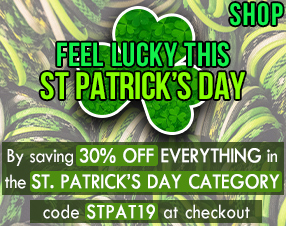 Save 30% Off Everything in the St. Patrick's Day Category