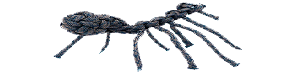 Photo tutorial for a paracord spider