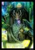 Fantasy Flight Art Sleeves: Android Netrunner: Wotan