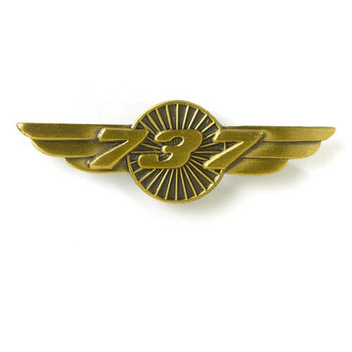 737 Wings Pin