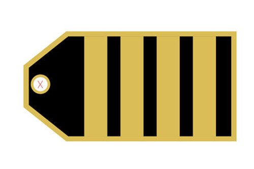 Captain (4 Stripes) Luggage Tag
