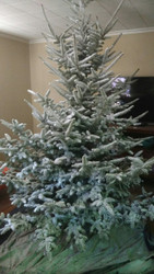 how to flock a real christmas tree - Flocked Real Christmas Tree