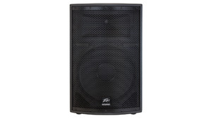 Peavey SP2 speaker enclosure
