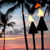 Twin Black Cone Tiki Torches