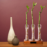 1B Clear Lacquered Handsel signature gift - (a gift or token of good fortune or good will).