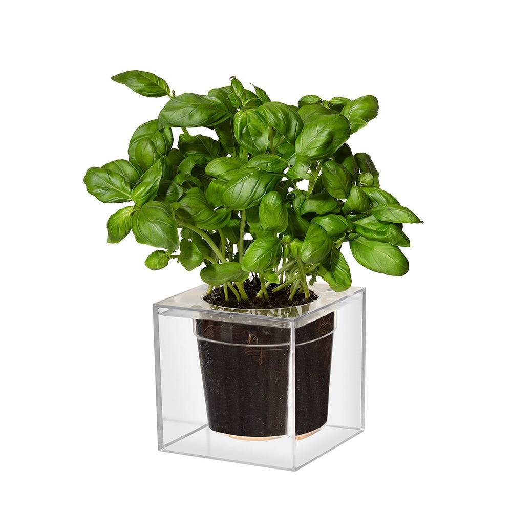 BOSKKE Cube Planter | The Design Gift Shop