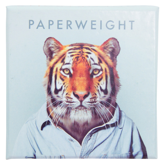 Paperweight Tiger gift box | The Design Gift Shop