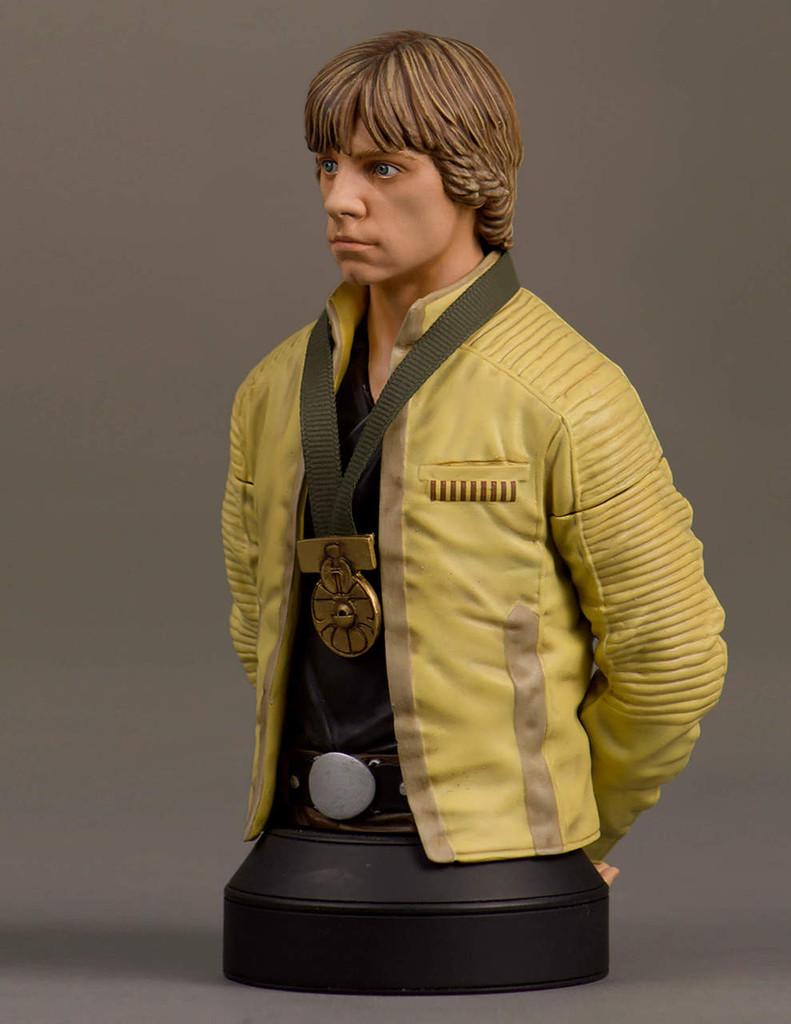 Luke Skywalker Hero Of Yavin