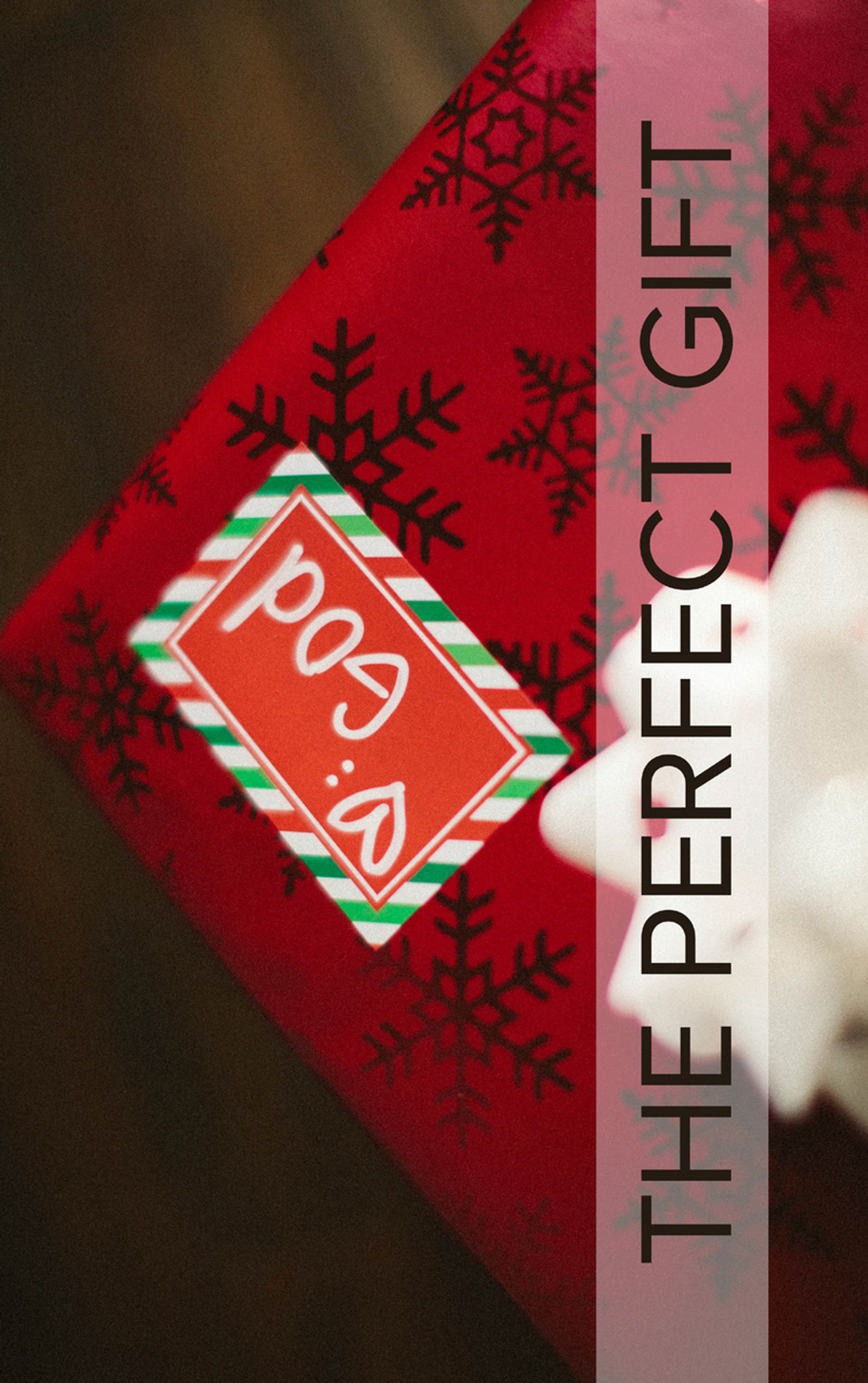 Christmas Gospel Tract | The Perfect Gift from God