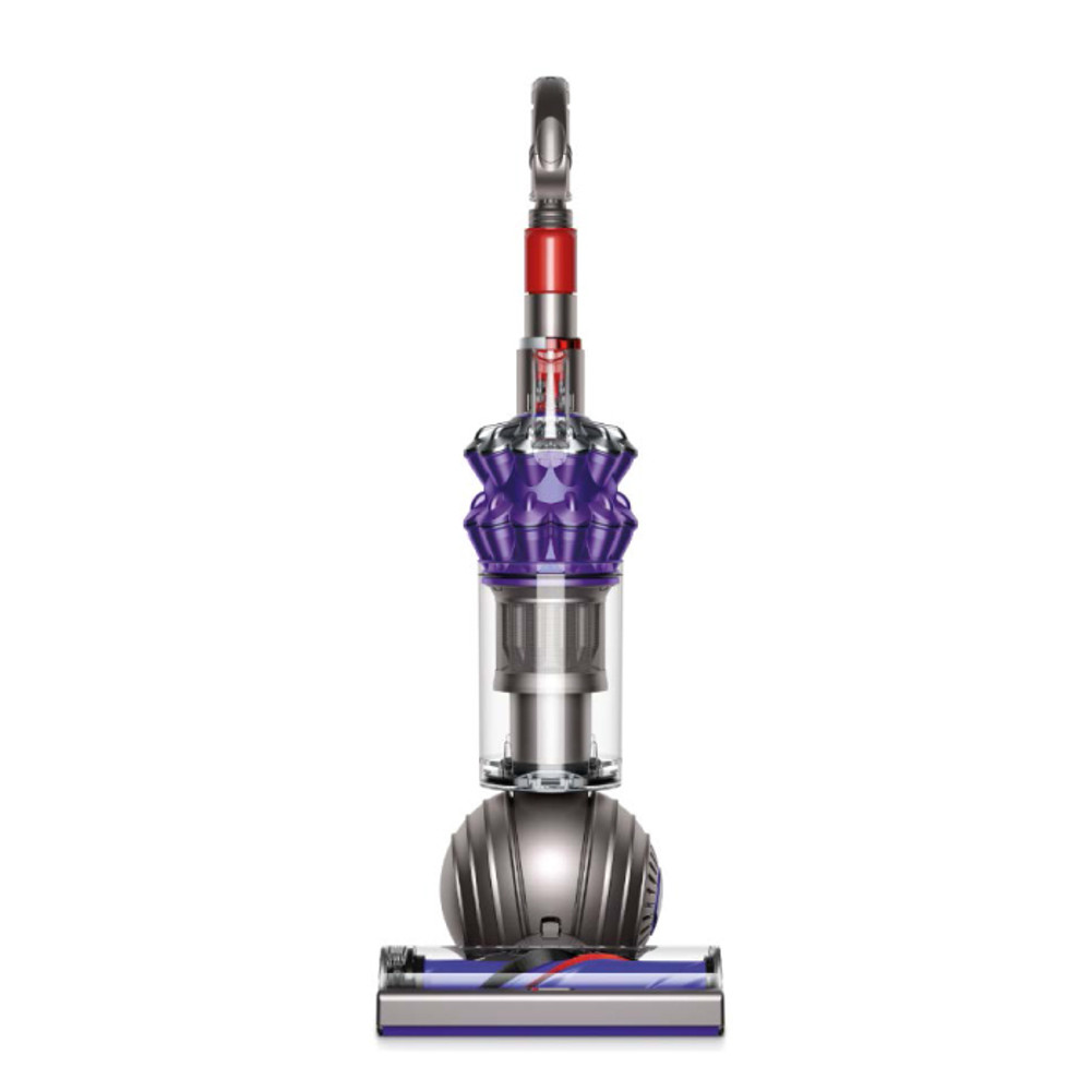 Dyson Small Ball Animal Vacuum