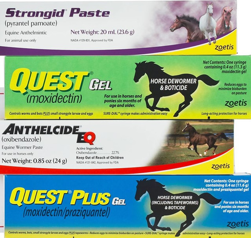 1 Tube each - Quest, Quest Plus, Strongid, and Anthelcide EQ