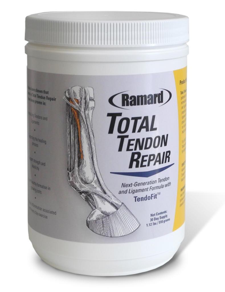 Total Tendon Repair