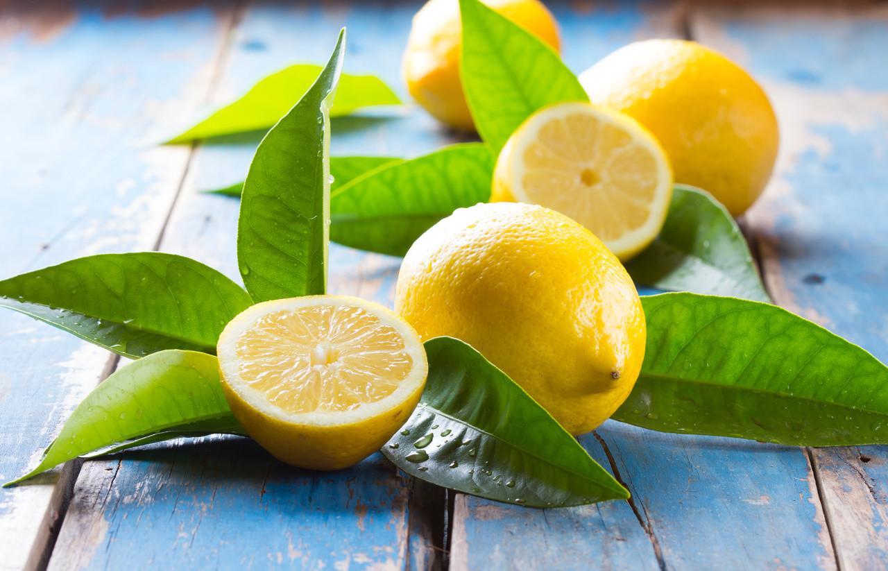 Lemon - Citrus limon