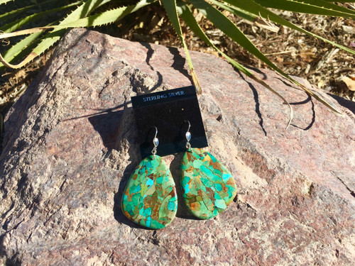 Tuscon Oblong Earrings