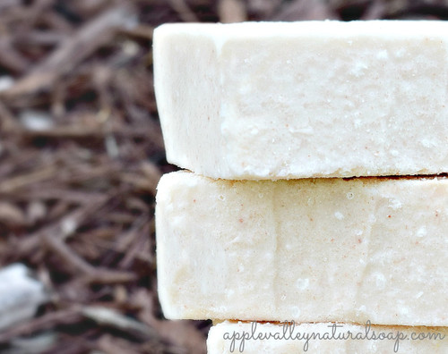 Salt Spa Therapy by Apple Valley Natural Soap