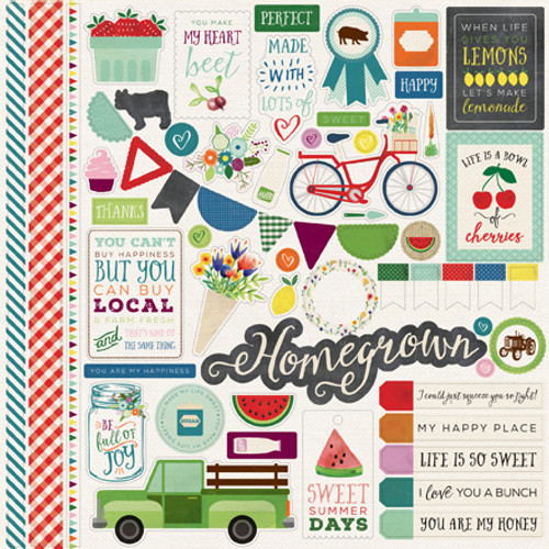 Homegrown Collection 12 x 12 Element Scrapbook Sticker Sheet by Echo Park Paper