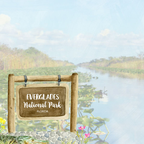 National Park Collection Everglades National Park 12 x 12 Double-Sided Scrapbook Paper by Scrapbook Customs