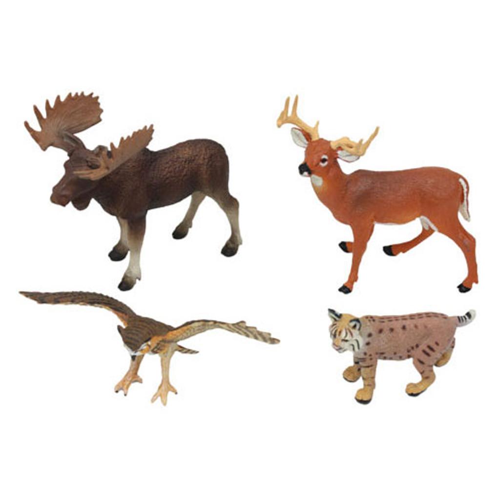 Animals of North America