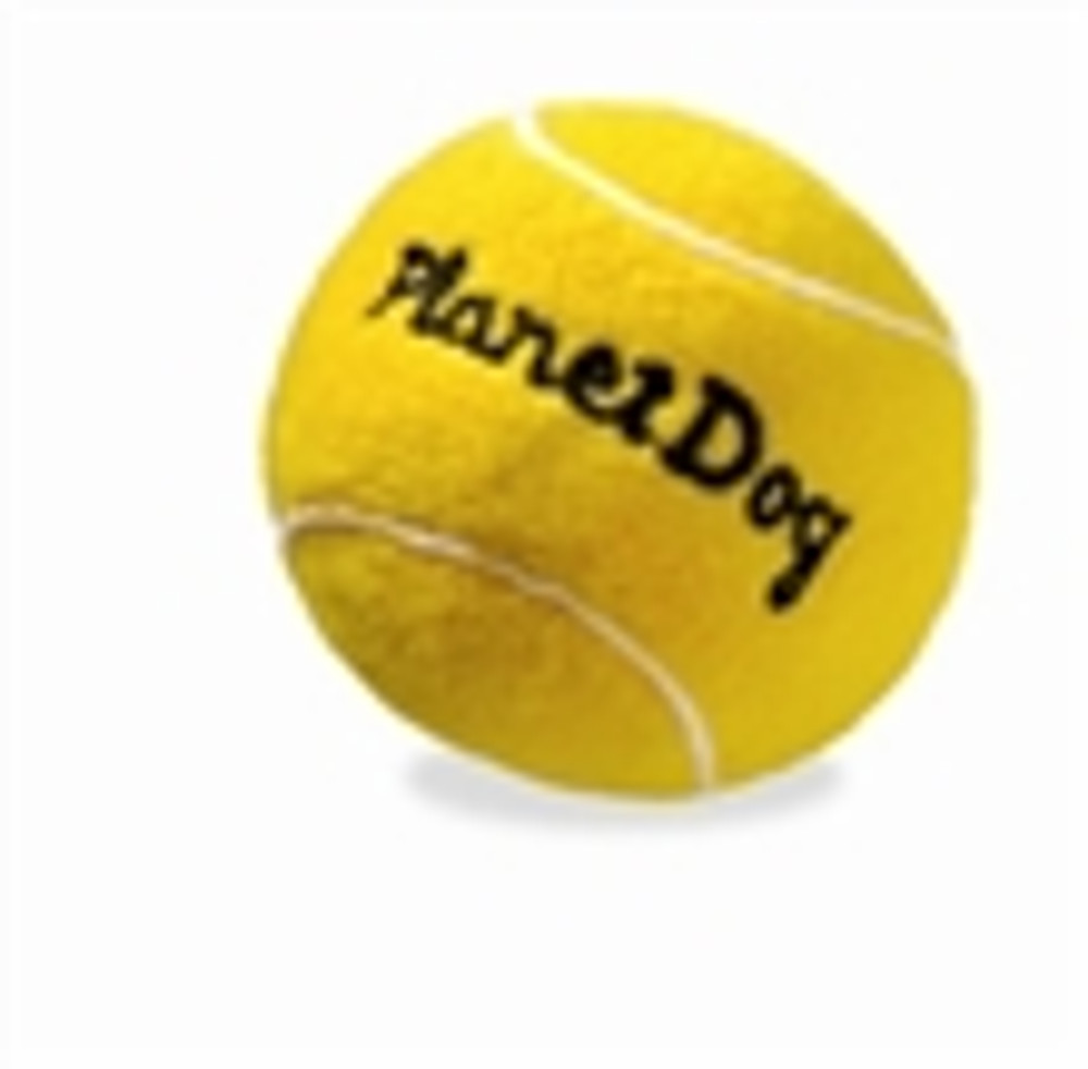 Squeaky Sport Tennis Ball