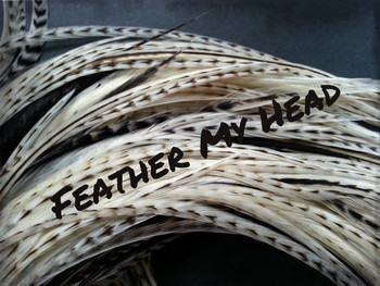 Hair Feather Extensions -Premium Grade Euro Feathers - Select Your Length - Natural Cream - white- Variant Markings