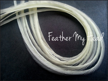 Hair Feather Extensions -Premium Grade Euro Feathers - Select Your Length - Natural Cream - white