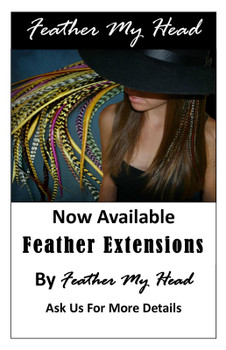 Feather My Head Feather Extension Marketing Poster