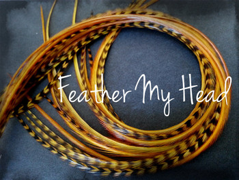 Feather Hair Extensions 9 - 12 Inches Long (23-30cm) Thin Fashion Euro - Grizzly Stripe And Solid Mix - 10 Pc Carmel