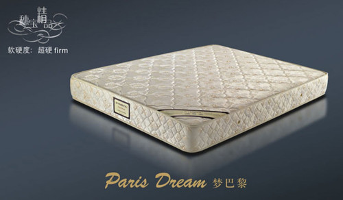 DOUBLE PARIS DREAM ENSEMBLE (BASE & MATTRESS) - SUPER FIRM