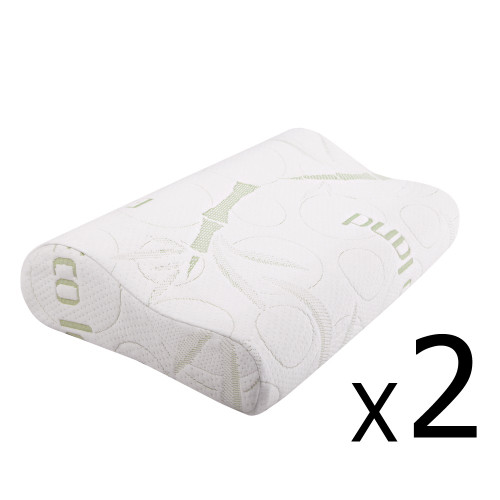 ECOLAND  (SET OF 2 ) MEMORY FOAM PILLOW WITH BAMBOO FABRIC COVER