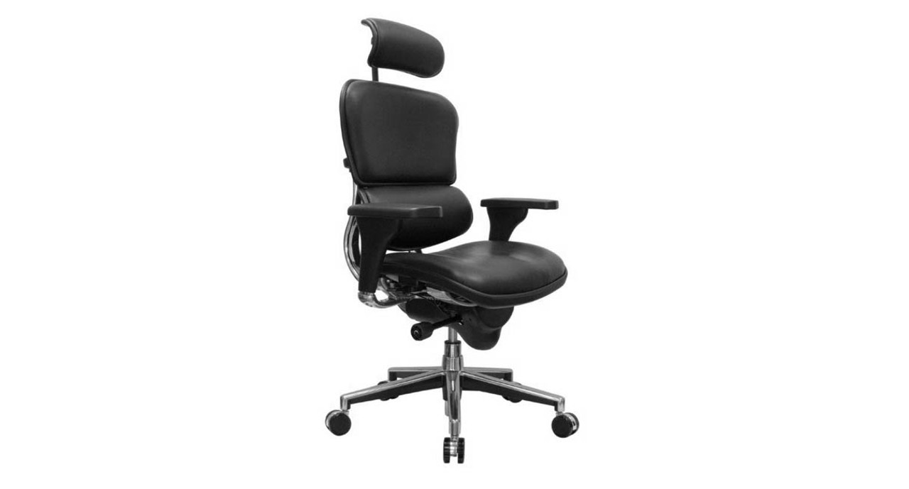 Back headrest and seat cushion adjust to fit many types of users. The Raynor Ergohuman Leather Chair ...  sc 1 st  The Human Solution & Shop Raynor Ergohuman Chairs - Leather with Headrest LE9ERG