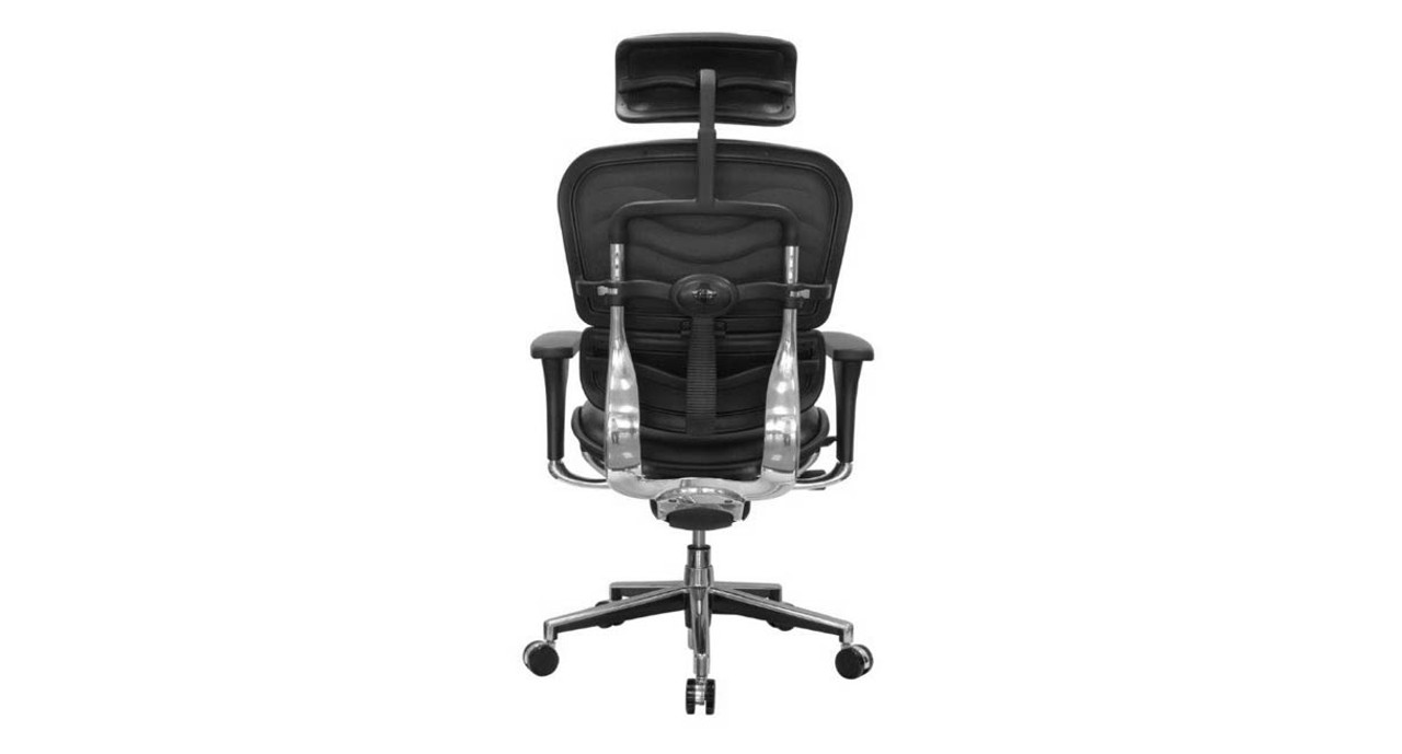 The chair comes with height-adjustable pivoting armrests  sc 1 st  The Human Solution & Shop Raynor Ergohuman Chairs - Leather with Headrest LE9ERG