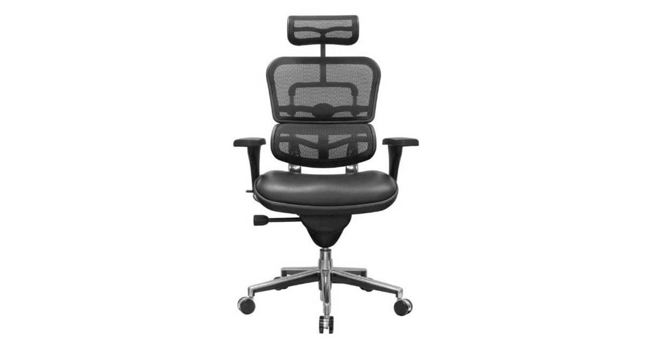 The Raynor Ergohuman Mesh Chair With Leather Seat And Headrest Is Available  With Black Mesh On