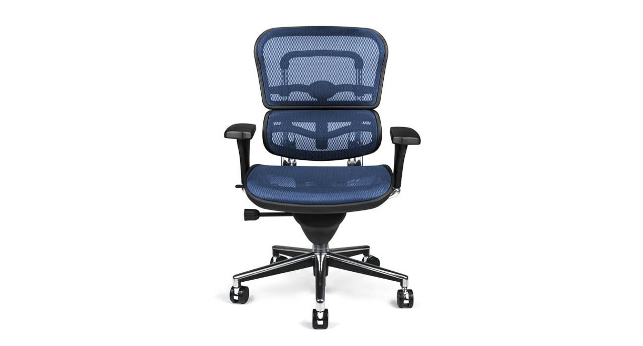 Shop Raynor Ergohuman Chairs Mesh Chair Me8erglo