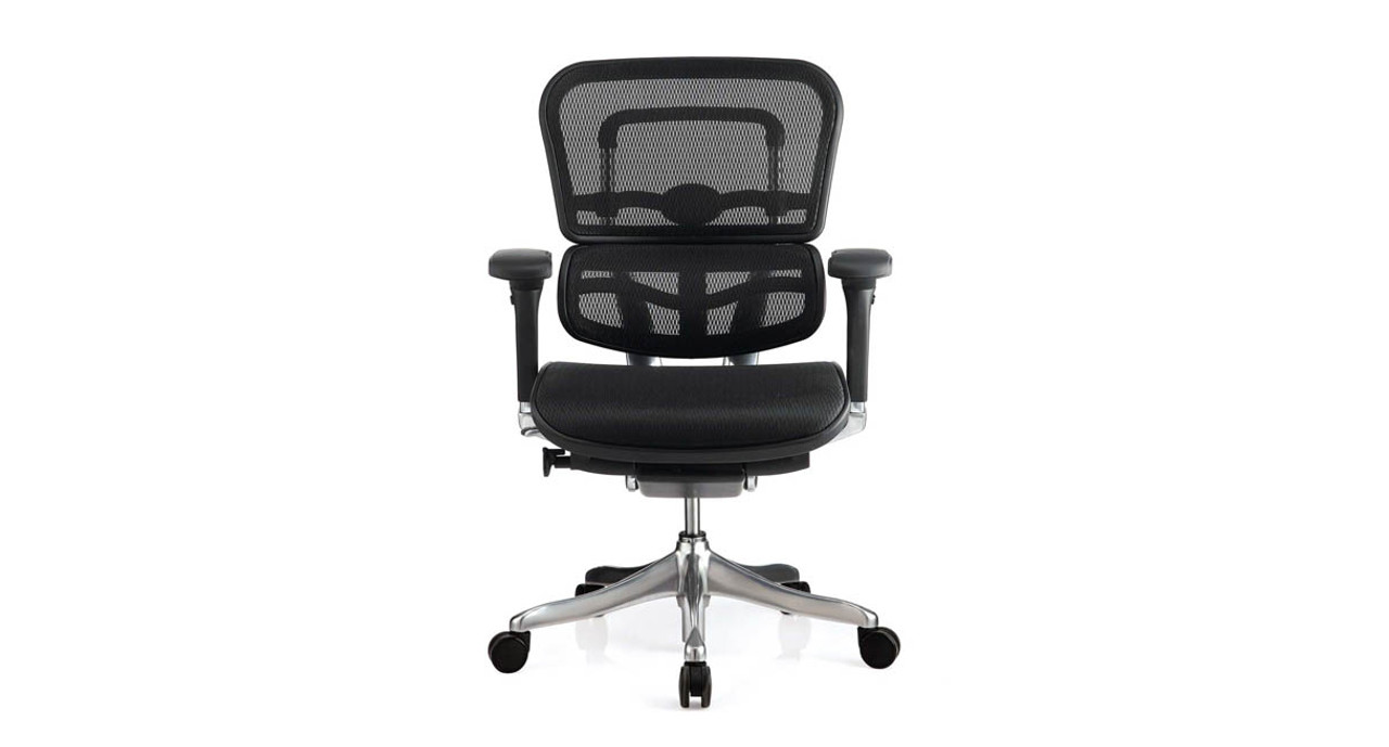 Enjoy adjustable tilt tension that lets you customize the Raynor Ergo Elite Chairu0027s recline resistance  sc 1 st  The Human Solution & Raynor Ergo Elite Chair ME5ERGLTLOW | Shop Raynor Ergonomic Chairs