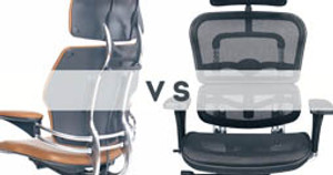Clash of the Titans: Ergohuman vs. Freedom Chair