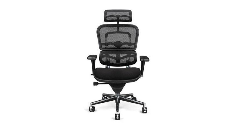 Enjoy fully supportive seating with the Ergohuman Mesh Chair with Fabric Seat and Headrest