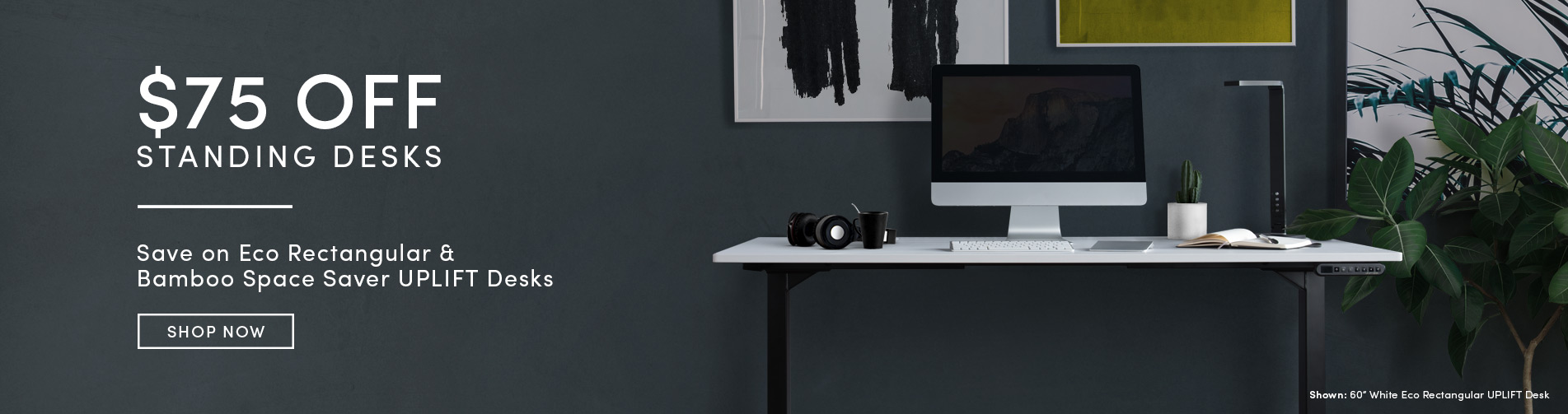 Save $75 on Select Standing Desks