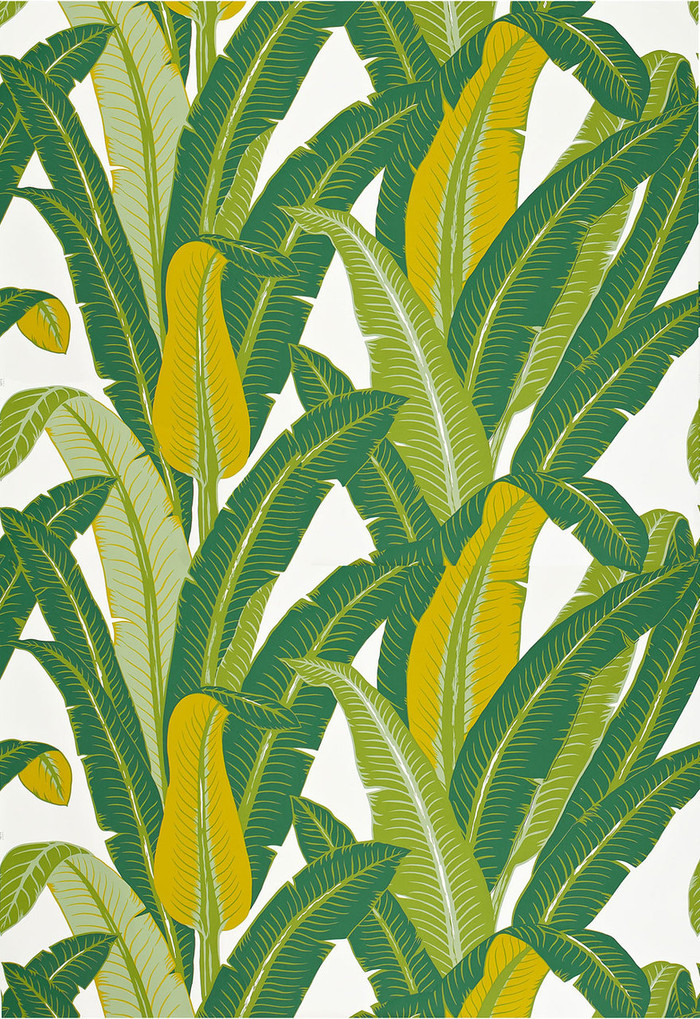 Schumacher Tropical Isle Wallpaper Green on White 2707230 (Priced and Sold by the Yard.  Minimum Order 2 Yards)