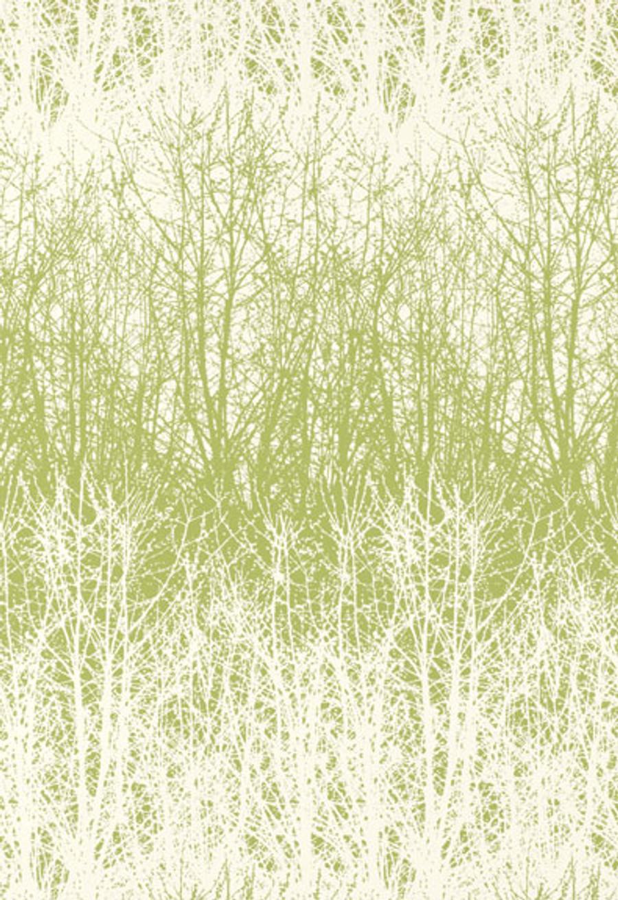 Schumacher Birches Wallpaper in Leaf/White
