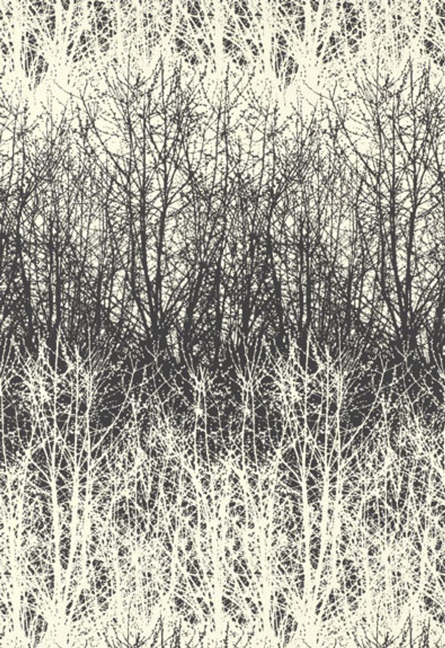 Schumacher Birches Wallpaper in Black/White