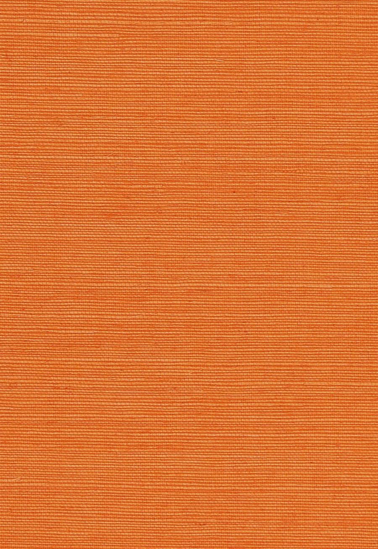 5004719 Mandarin