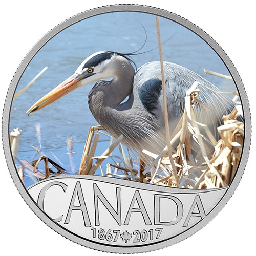 GREAT BLUE HERON 2016 $10 1 oz Silver Color Coin
