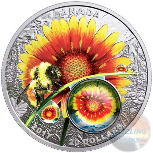 MOTHER NATURE'S MAGNIFICATION-Beauty under the Sun 2017 $20 Pure Silver Coin