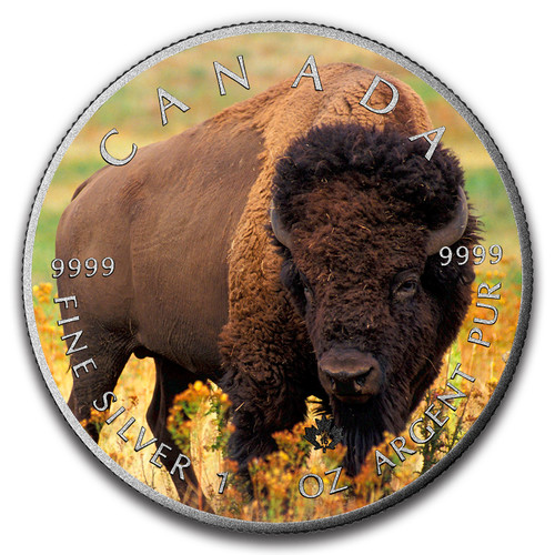 BISON - CANADIAN WILDLIFE SERIES - 2016 1 oz Pure Silver Canadian Coin - Color & Antique Finish
