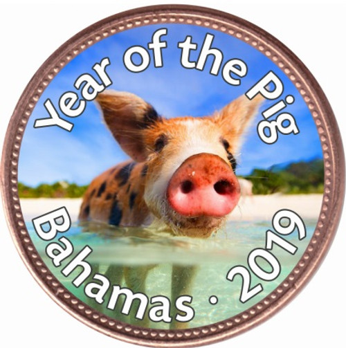 2019 Pig of Paradise Art Enamel Copper Coin 1 cent Bahamas