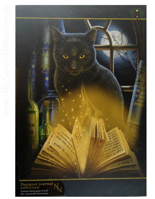 Bewitched Cat Spell Book