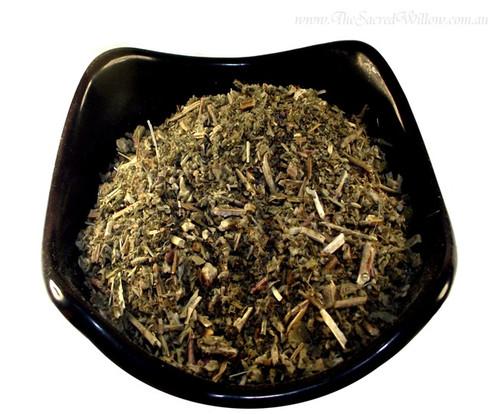 Pennyroyal (Mentha pulegium)
