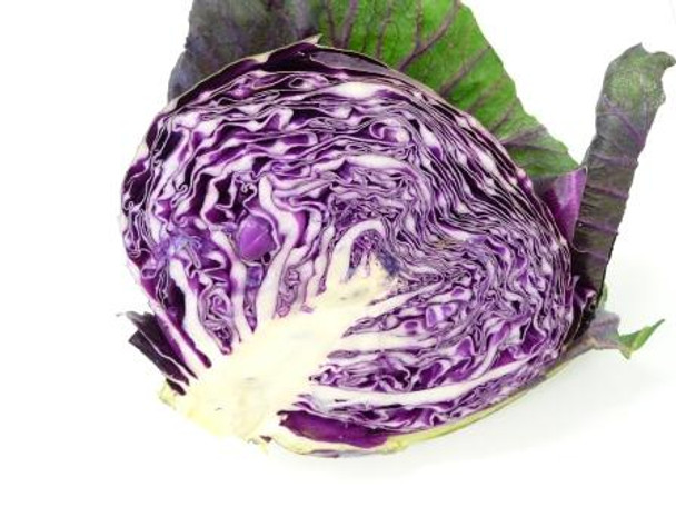 Cabbage - Red - Half