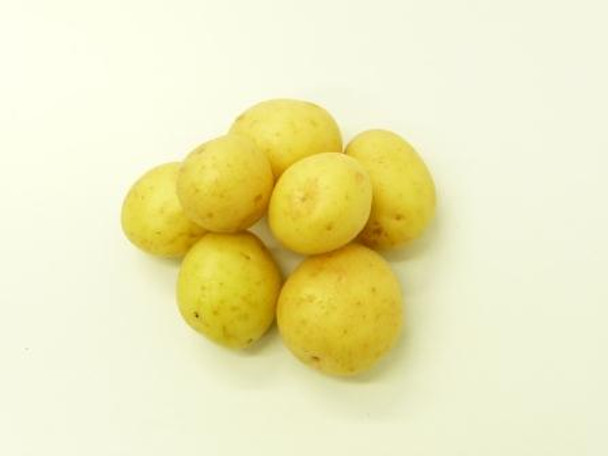 Potatoes - Gourmet White - 1kg Bag